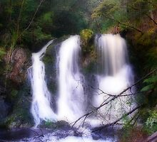 Hogarth Falls, Tasmania by Keith G. Hawley