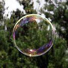 Bubble by Len Bomba