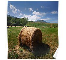 Rural Scene Poster