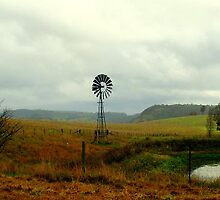 Little Hartley Windmill by Cassy Hodge