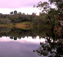 Sunset at Wentworth Falls Lake by Cassy Hodge