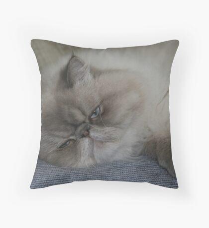 Sleeping Tubbies Throw Pillow