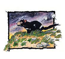 Tasmainan devil on a windy night Photographic Print