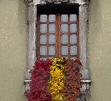 Dripping Flowers by Janet Hamman Hunt