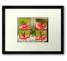 INVASION Framed Print