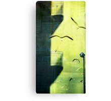 City shadow Canvas Print