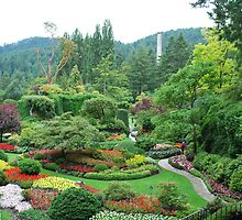 Butchart Gardens by Cathy Jones