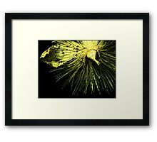Spines in Yellow Framed Print