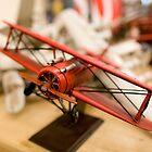 Bi-Plane by John Bergman