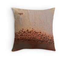 Ravages of Time Throw Pillow