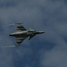 F 16 Belly by Chris  Munday