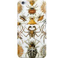 Haeckel Spiders iPhone Case/Skin