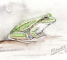 The green and gold frog L.raniformis by SnakeArtist