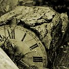 A Stopped Clock by SHOI Images