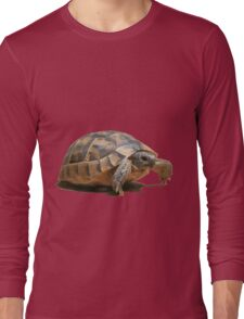 Portrait of a Young Wild Tortoise Isolated Long Sleeve T-Shirt