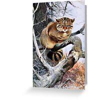 Wildcat Vintage Artwork Greeting Card