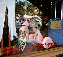 Pink Tricycle by Dana Roper