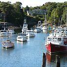 Boats parked off the dock. by John Cullen