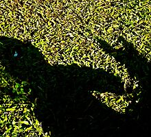child and dog shadow play by mandyemblow