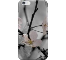 Just a Dash of Pink iPhone Case/Skin