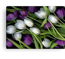 Tulip Medley Canvas Print
