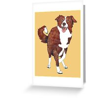 Red Border Collie  Greeting Card