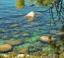 Tahoe Waters by Barbara  Brown