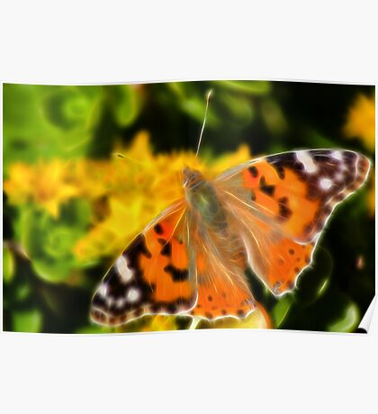 Painted Lady Butterfly. Poster