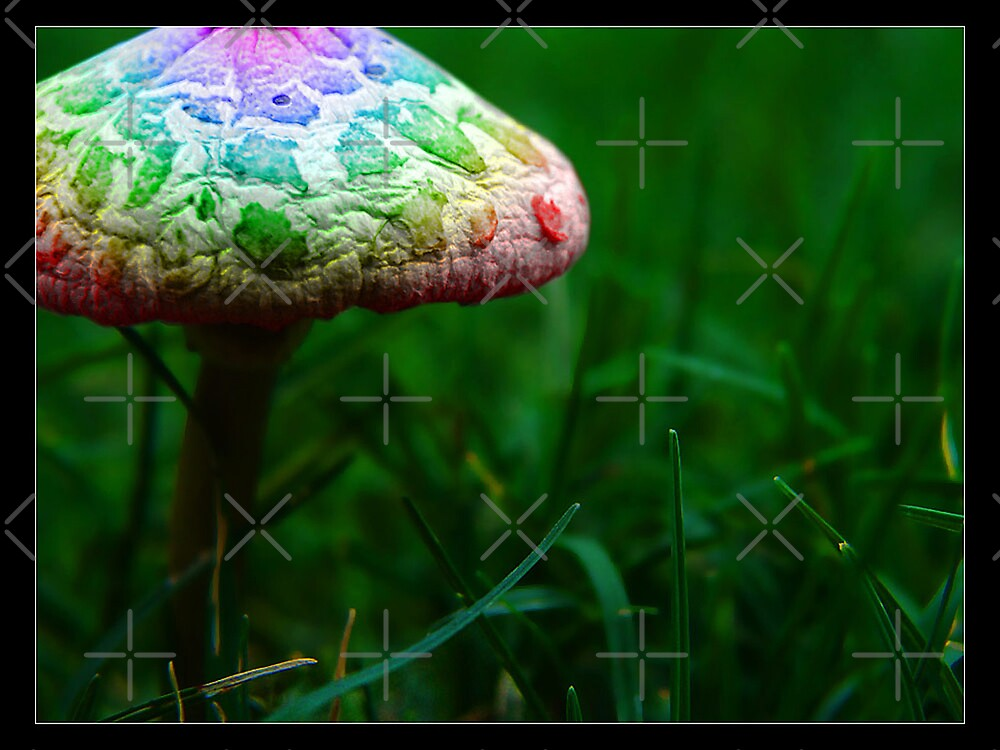 Magic mushroom by R-evolution GFX