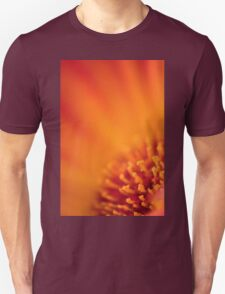Too Close to the Sun T-Shirt