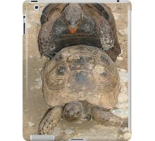 Humorous Mating Tortoises iPad Case/Skin