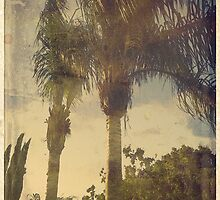 Palm Trees in the Wind by coolidgemarto
