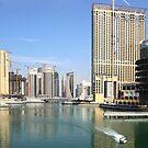 Dubai Marina by Craig Scarr