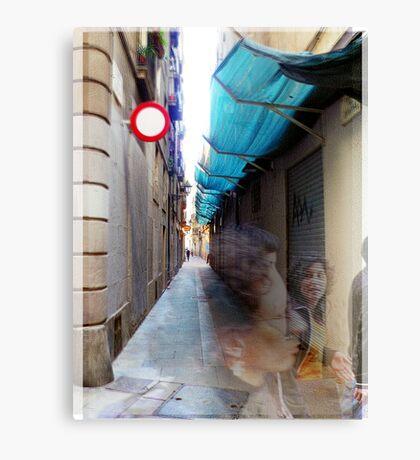 2007-03-10 [P1020720-P1020722 _GIMP] Canvas Print