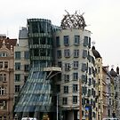 The Dancing House by Segalili