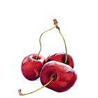 Three Cherries by Mariana Musa