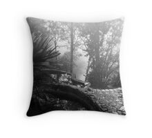 Cobble and Mist Throw Pillow