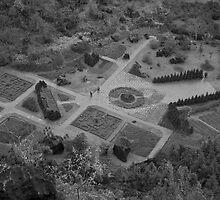 The Cloud Yard by samsara