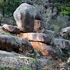 Blue Mountain Boulders by Bev Woodman