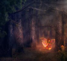 Forest Fairy 3 by AnnArtshock