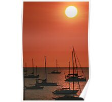 Darwin Sunset Poster