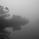 River Mist by pennyswork
