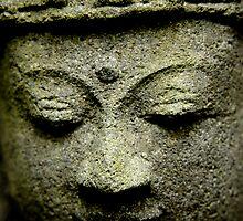 *Quiet Face* close up by Karen  Betts