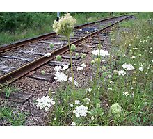 """On the side of the tracks """"We Grow"""" Photographic Print"""