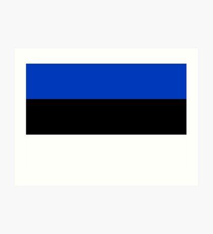 Estonia, national id Art Print