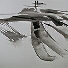 wind walking 2 by evon ski