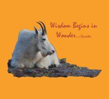 Mountain Goat & Socrates by William C. Gladish