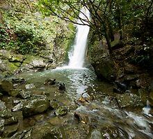 Seal Waterfall by JBSmith