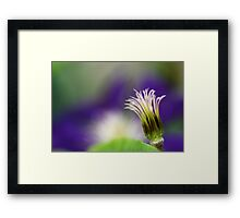 Nature's Palette Framed Print