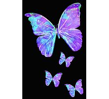 Purple Butterflies by Jan Marvin Photographic Print